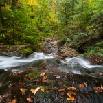 Ricketts Glen State Park Autumn Waterfall