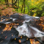 Pennsylvania Ricketts Glen Ganoga Falls Autumn