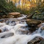 North Carolina Boone Fork Creek Autumn
