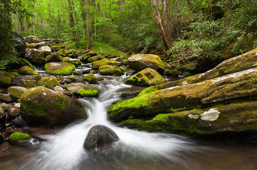 Roaring fork creek big rock right 0982 mark vandyke for Roaring fork smoky mountains