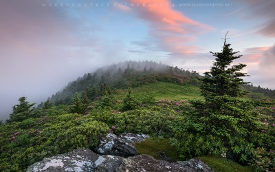 Familiar Grounds:  Grassy Ridge Roan Mountain Highlands
