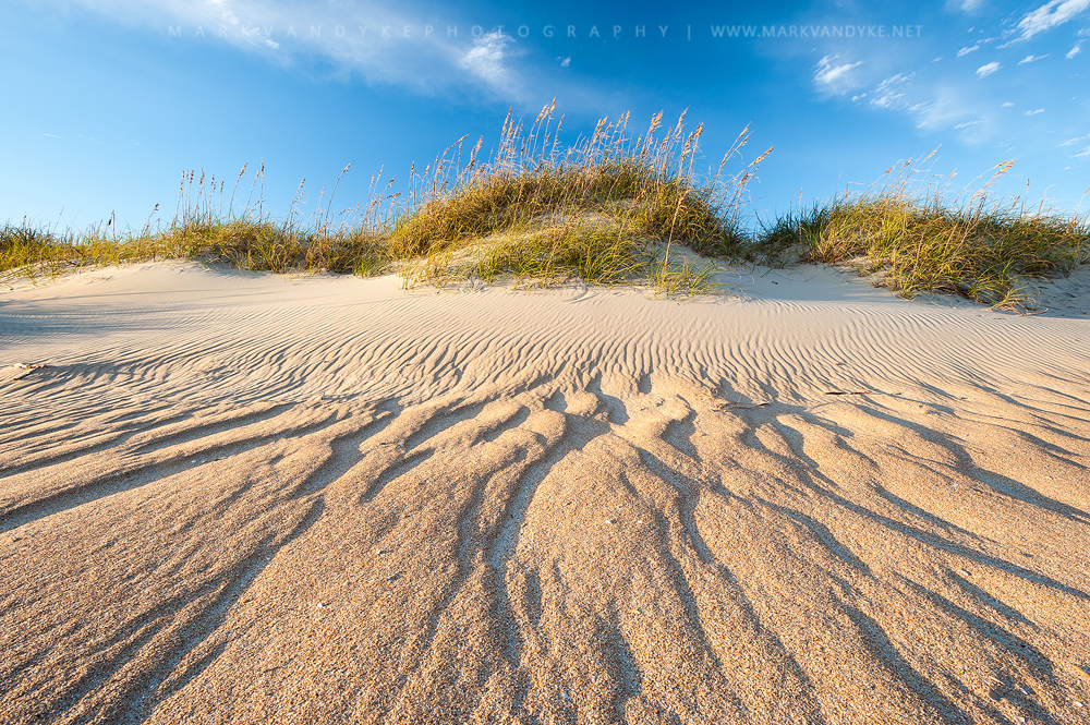 Shaped by Wind: Sand Dunes on Cape Hatteras National Seashore
