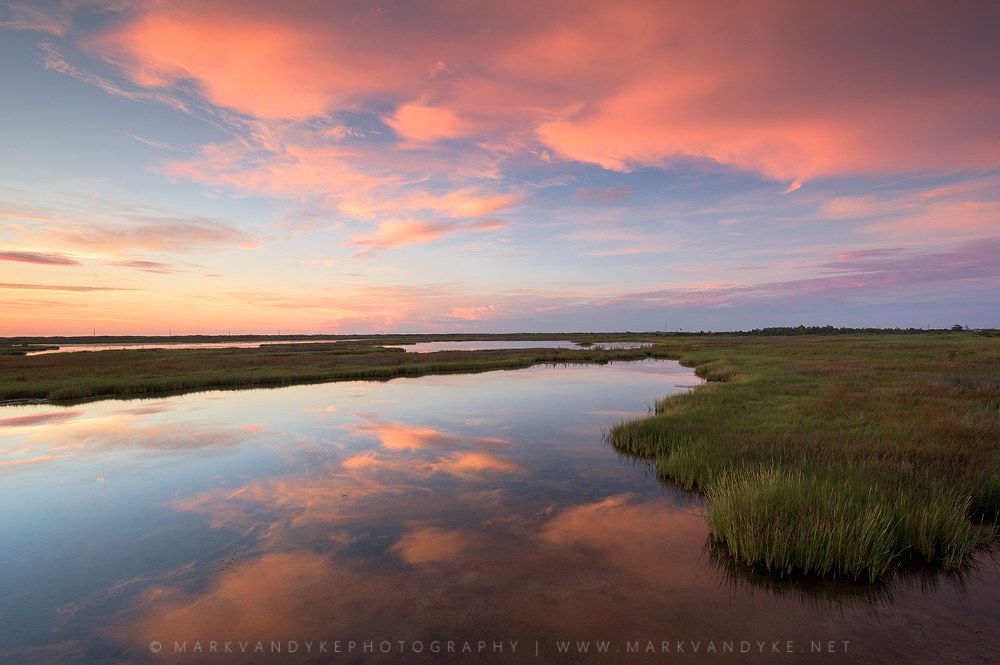 Pink Marshes: Cape Hatteras National Seashore, North Carolina