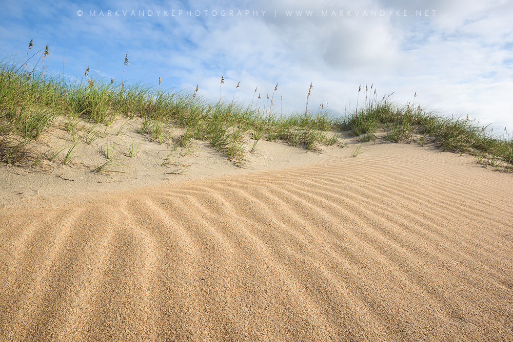 Wind & Sand: Hatteras Dunes North Carolina Outer Banks