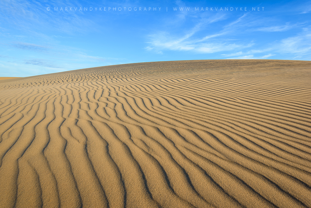 Patterned Sand: Jockey's Ridge State Park North Carolina
