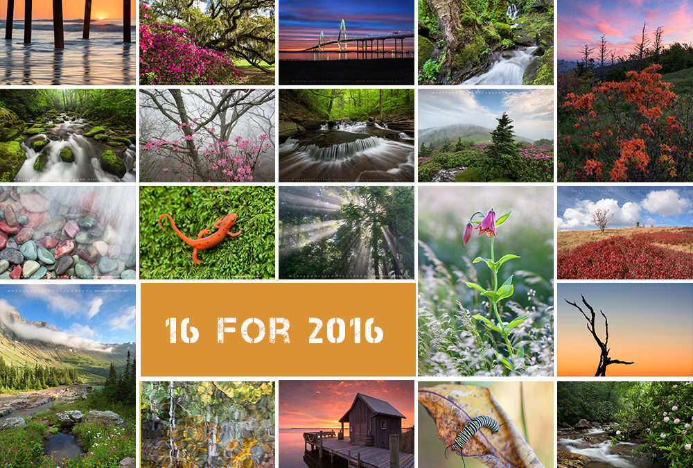 16 Experiences for 2016