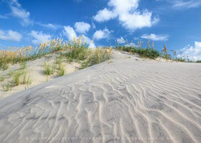 Sand Dune Pea Island North Carolina